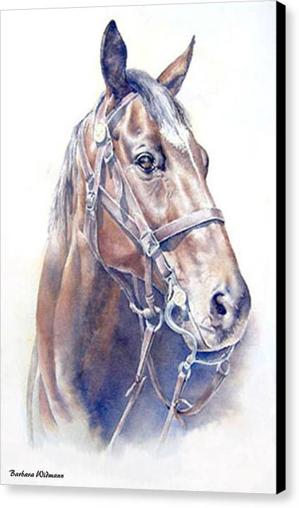 Horse Canvas Print featuring the painting Regal A Cavalry Horse Portrait by Barbara Widmann