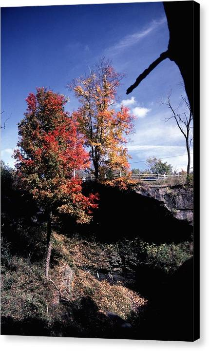 Autumn Color Canvas Print featuring the photograph 10602-1 by Mike Davis