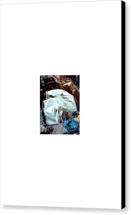 Collage Abstract Canvas Print featuring the photograph Streetart... Perimeter Control by David M Davis