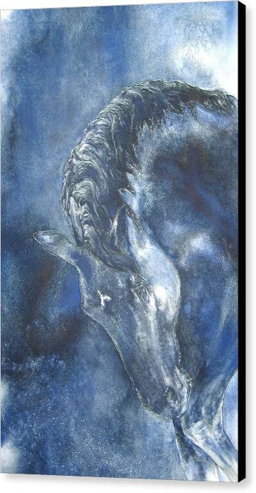 Horse Canvas Print featuring the painting Blues by Barbara Widmann