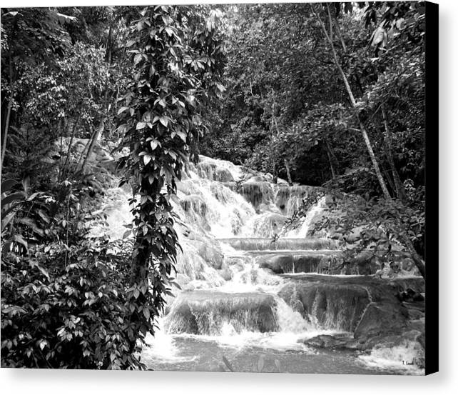 Jamaica Canvas Print featuring the photograph Dunn's River by Thomas Leon