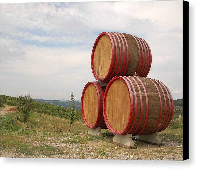 Wine Canvas Print featuring the photograph Wine by Reyna Martin