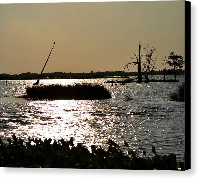 Bayou Canvas Print featuring the photograph Bayou Sunset by Maggy Marsh