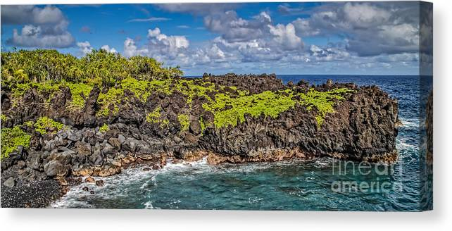 Hawaii Canvas Print featuring the photograph Black Sand Beach Maui Hawaii by Edward Fielding