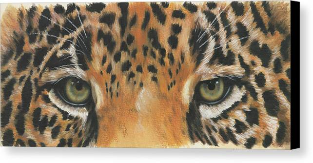 Jaguar Canvas Print featuring the painting Eye-catching Jaguar by Barbara Keith