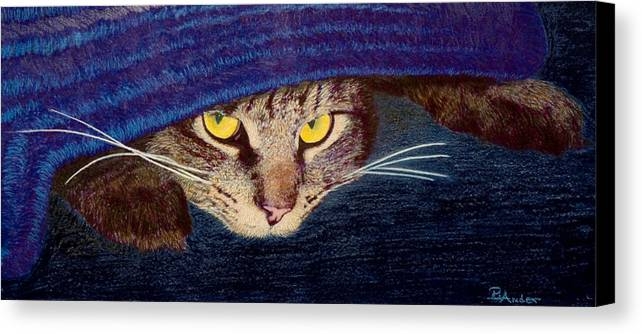 Maine Coon Cat Canvas Print featuring the drawing Hide And Seek by Brent Ander