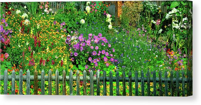 Photography Canvas Print featuring the photograph Close-up Of Flowers, Muren, Switzerland by Panoramic Images