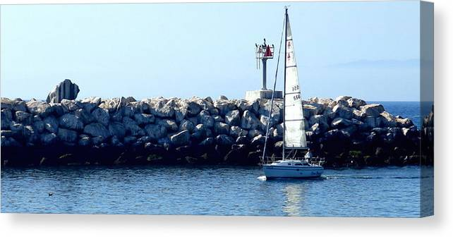 Sailing Canvas Print featuring the photograph Coming In by John Kera