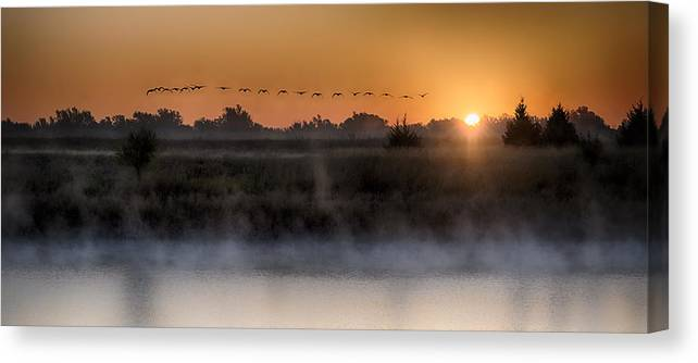 Sunset Art Prints Canvas Print featuring the photograph Geese At Sunrise by Garett Gabriel