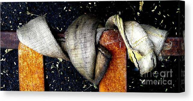 Diptych Canvas Print featuring the photograph Pc 69 by Marlene Burns