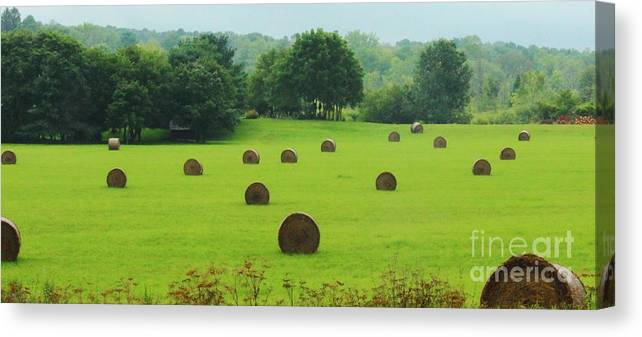 Bales Of Hay Canvas Print featuring the photograph Bales Of Hay by Renee Moskowitz
