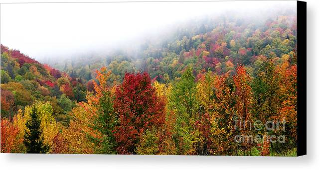 Autumn Canvas Print featuring the photograph Fall Color Panoramic by Thomas R Fletcher