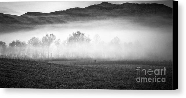 Black And White Landscape Photography Canvas Print featuring the photograph Fog In The Cove by David Waldrop