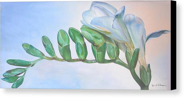 Floral Painting Canvas Print featuring the painting Freesia by Muriel Dolemieux