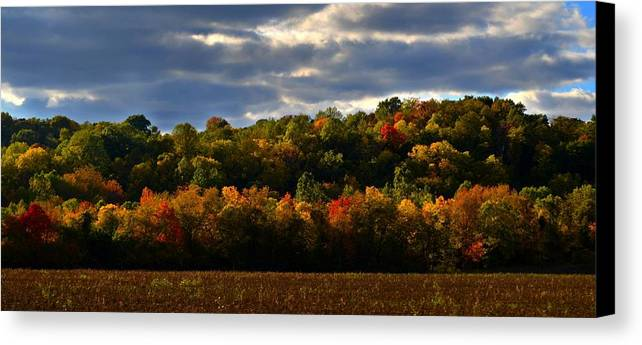 Autumn Canvas Print featuring the photograph The Layers Of Autumn by Julie Dant