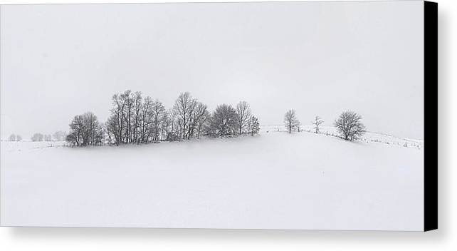 Winter Canvas Print featuring the photograph Winter Tree Line In Indiana by Julie Dant