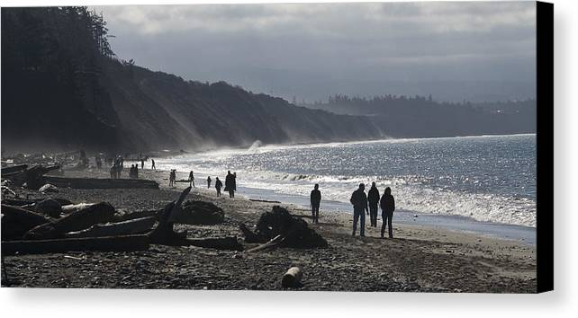 Beach Canvas Print featuring the photograph Dungeness Spit by Chad Davis
