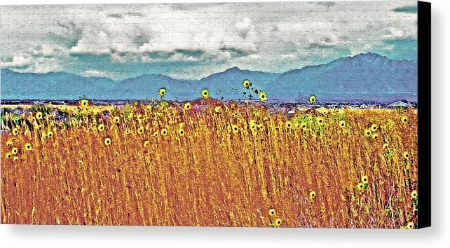 Fields Canvas Print featuring the photograph Sunflower Field 1 by Steve Ohlsen