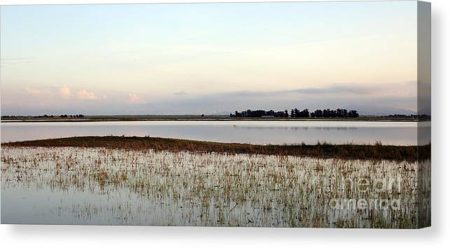 Vernal Canvas Print featuring the photograph Jepson Prairie Vernal Pools by Juan Romagosa