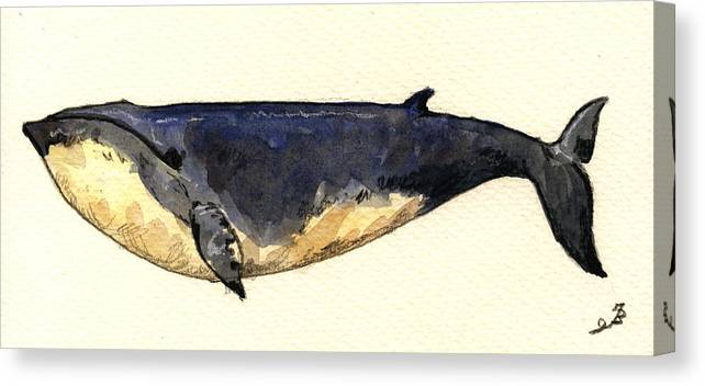 Minke Canvas Print featuring the painting Minke Whale by Juan Bosco