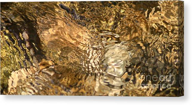 Abstract Nature Canvas Print featuring the photograph What by Fred Sheridan
