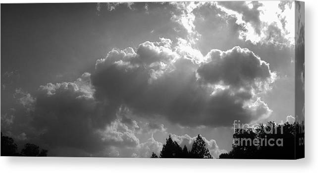Iphone 4s Canvas Print featuring the photograph 05222012057 by Debbie L Foreman