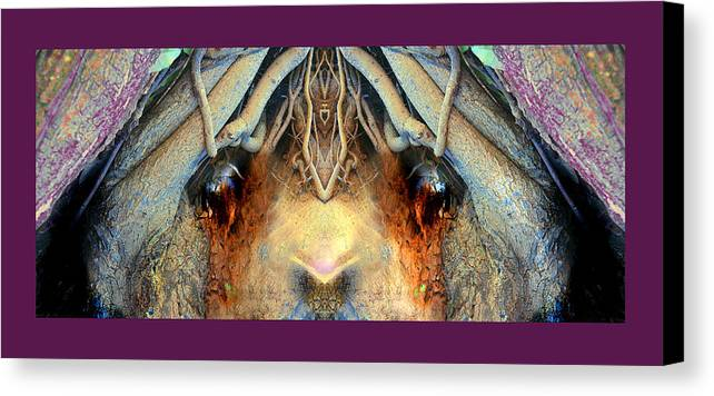 Faces Of Trees Canvas Print featuring the photograph Bugeye'd Creep by Oliver Norden