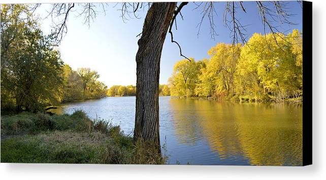 Forest Canvas Print featuring the photograph Golden Pond Panorama by Bonfire Photography
