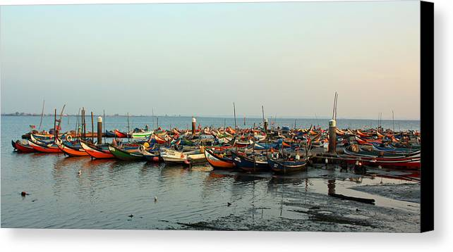 Boat Canvas Print featuring the photograph Moliceiros New 3 by Dave Dos Santos
