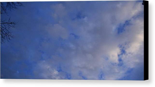 Clouds Canvas Print featuring the photograph Cloudy Twigs by Joshua Sunday
