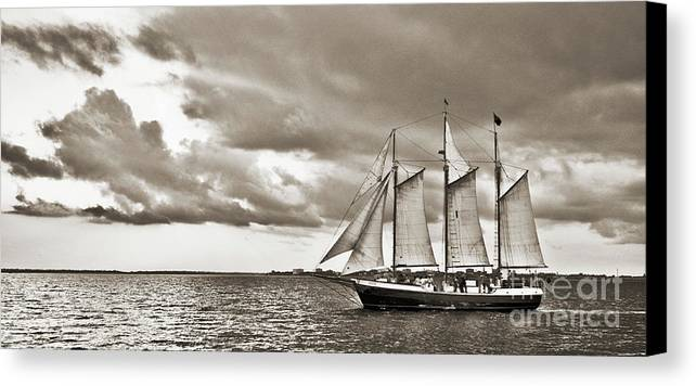 Tall Ship Canvas Print featuring the photograph Schooner Pride Tallship Charleston Sc by Dustin K Ryan