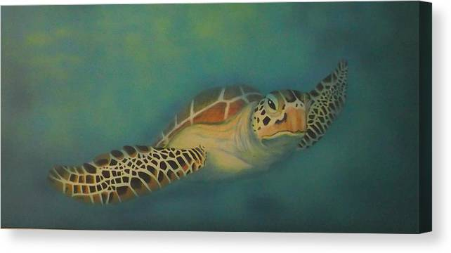 Underwater Canvas Print featuring the painting Turtle by Amanda Machin