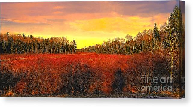Winter Canvas Print featuring the photograph Wisconsin Winter by Robert Kleppin