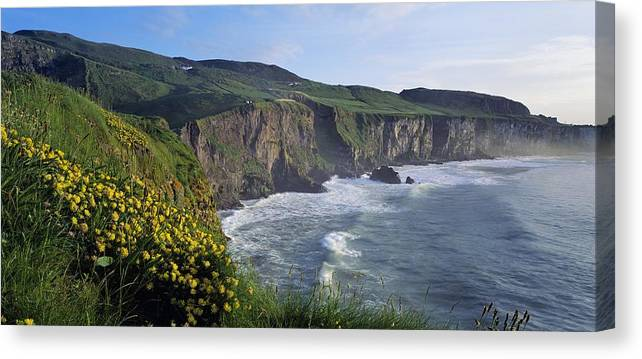 Cloud Canvas Print featuring the photograph Wildflowers At The Coast, County by The Irish Image Collection