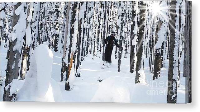 Landscape Canvas Print featuring the photograph Lookout Trees by Brent Clark