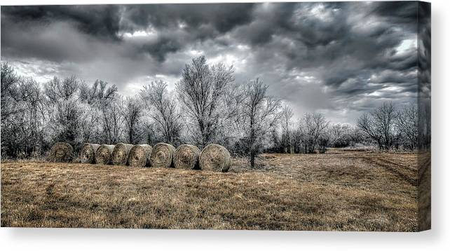 Winter On Canvas Canvas Print featuring the photograph The Cold by Garett Gabriel