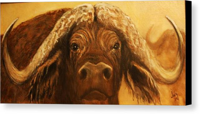 Buffalo Canvas Print featuring the painting Cape Buffalo by Jody Domingue