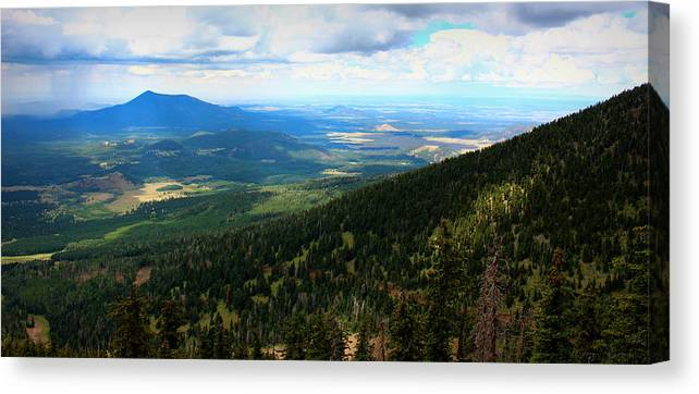 Flagstaff Canvas Print featuring the photograph Evergreen Slopes by Aaron Burrows