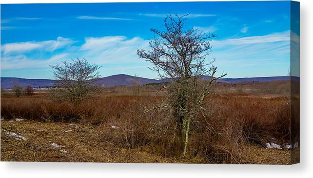 Canaan Canvas Print featuring the photograph Canaan Valley West Virginia by Alex Grichenko