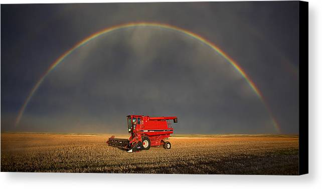 Case Canvas Print featuring the photograph Golden by Thomas Zimmerman