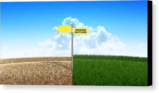 Grass Canvas Print featuring the digital art Green Pastures Sign by Allan Swart