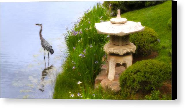 Pond Canvas Print featuring the photograph In A Dream World by Milena Ilieva