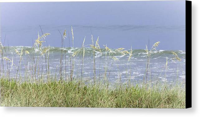 4th Canvas Print featuring the photograph Sea Oats Panorama 1 by Karen Stephenson