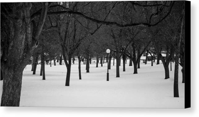 Winter Canvas Print featuring the photograph Winter Park by Adam Caron