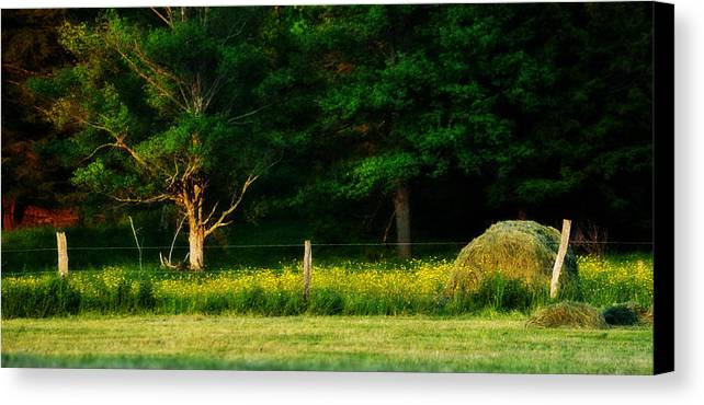 Haybale Canvas Print featuring the photograph Late Summer's Eve by Mary Frances