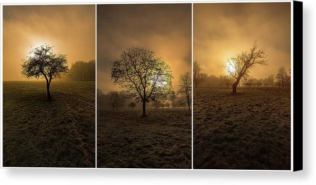 Foggy Morning In Phoenix Park In Dublin Canvas Print featuring the photograph Autumnal Triptych. by Piotr Dominiak