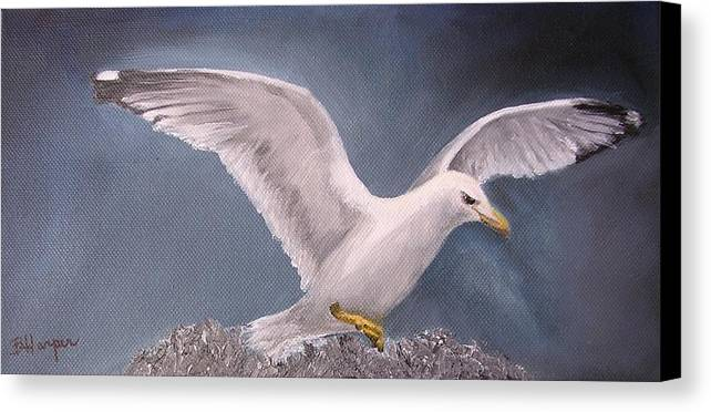 Seagull Canvas Print featuring the painting Herring Gull by Barbara Harper