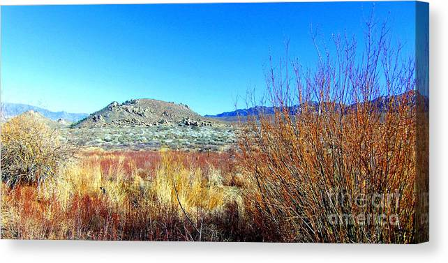 Sky Canvas Print featuring the photograph Desert by Marilyn Diaz