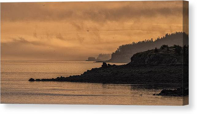 Lifting Fog At Sunrise On Campobello Coastline Canvas Print featuring the photograph Lifting Fog At Sunrise On Campobello Coastline by Marty Saccone