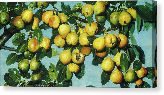 Joseph Decker Canvas Print featuring the painting Ripening Pears, 1885 by Joseph Decker